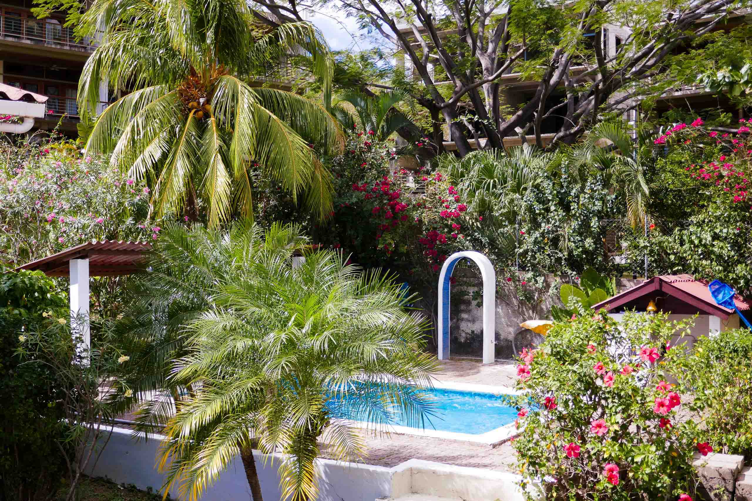 Casa Oro Group El-Pacifico-Hotel-San-Juan-del-Sur-Nicaragua-Talanguera-Eco-Hotel-Swimming-Pool-Trees-Flower-Coconut-Nature Accommodations